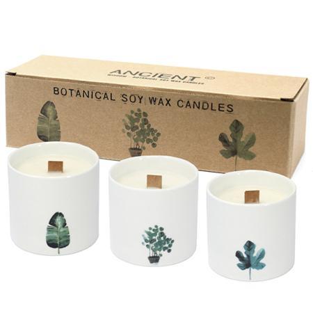 Pack of 3 Botanical Candles - Large sized | Marsh Viola Fragrance