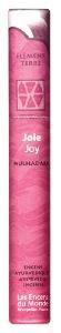 Ayurvedic Incense (Indian)   Les Encens du Monde   Joy   Tube of 14 Sticks