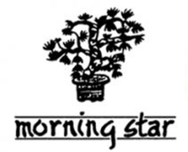 Morning Star Jasmine Incense | Box of 50 Sticks & Holder by Nippon Kodo