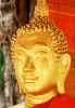 Greeting Card | Buddhist Themed | Gold Painted Buddha | #19 of 20