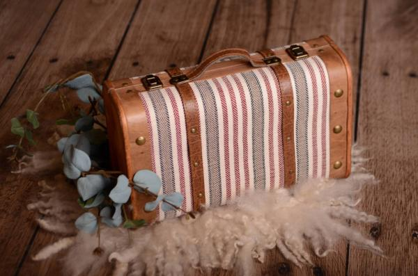 Small red striped suitcase