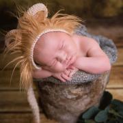 Gorro orejitas león