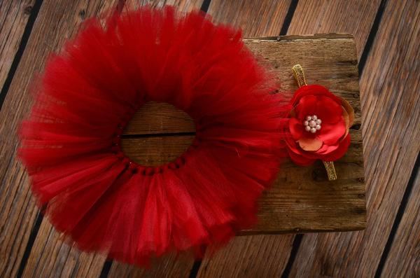 Red tulle tutu and flower headband set