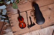 Kleine Violine