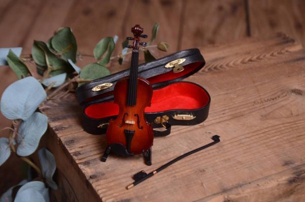 Mini violon