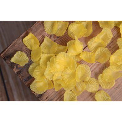 Blumenblätter in Gelb
