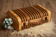Black and brown striped large suitcase