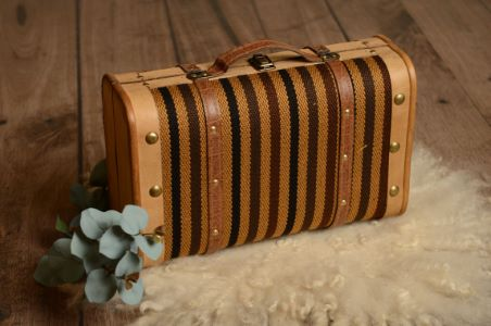 Black and brown striped small suitcase