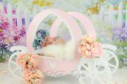 Carrosse blanc et rose