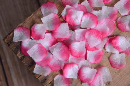 Petali rosa e bianco