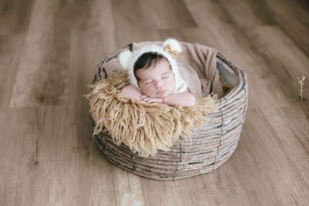 Birch nest