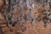 Manta lana virgen redonda gris