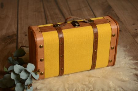 Small mustard suitcase