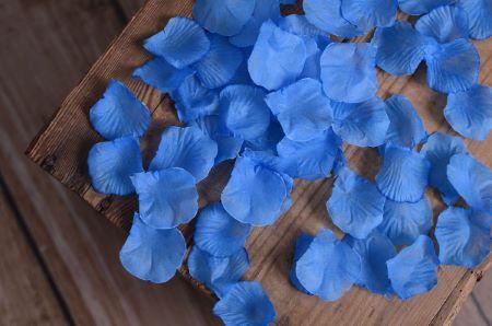 Sky blue petals