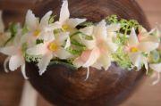 Light salmon floral headdress
