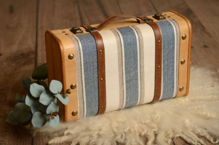 Blue striped suitcase