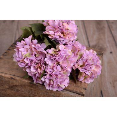 Hortensien Bouquet in Lila
