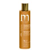 Shampooing Rafraichissant Solaire Mulato 200 ML