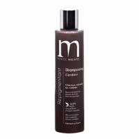 Shampoing Repigmentant Cendreur Mulato 200 ML