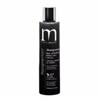 Shampoing Repigmentant Noir D'Aniline Mulato 200 ML