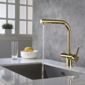 Apala 3-Way Pull-Out Kitchen Filter Tap Gold