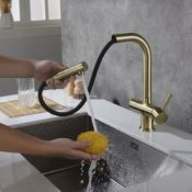 Apala 3-Way Pull-Out Kitchen Filter Tap Antique Brass & Inline Filter System