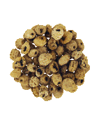 Tiger Nuts Skinned 11-14mm Cap River