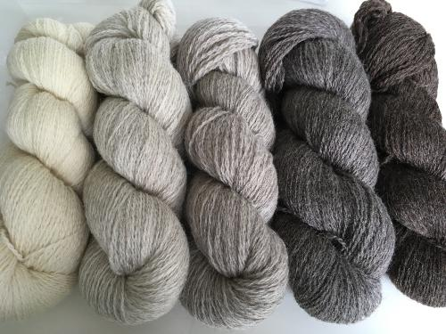 Union Yarn - British Wool Ombre Pack