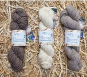 Fleece - Bluefaced Leicester Aran - West Yorkshire Spinners
