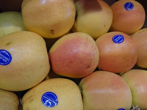 Pommes Golden Rosé