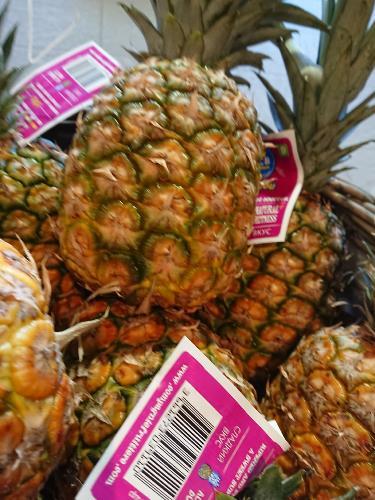 Ananas Panama