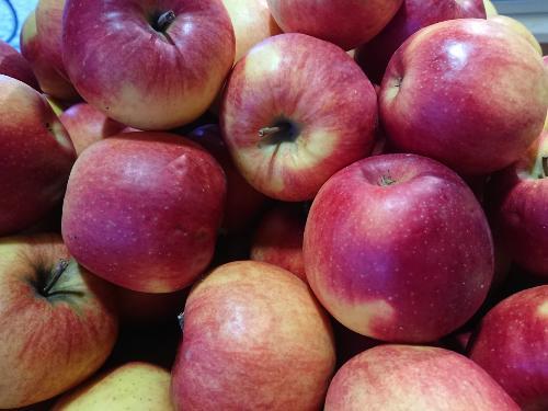 Pommes Jonagold promo