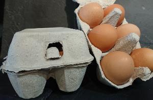 Boite de 6 œufs normands fermier