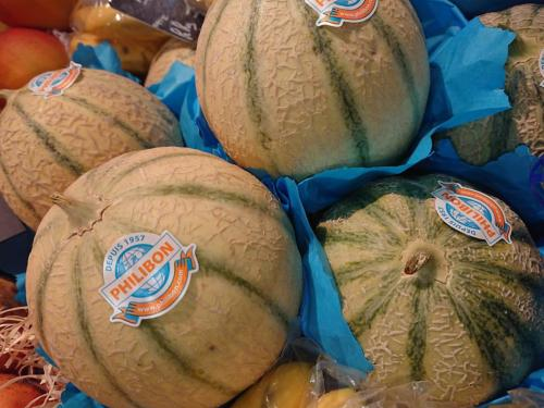 Melon Philibon