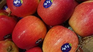 Pommes Jazz