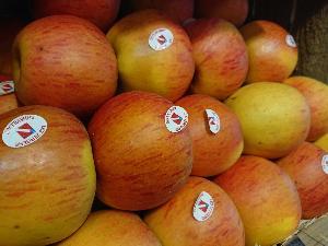 Pommes Rubinette 6p