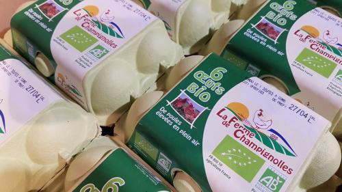 Boite 6 œufs normands fermier Bio