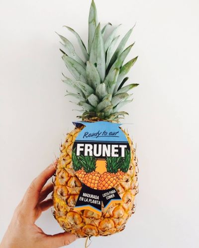 Ananas frunet
