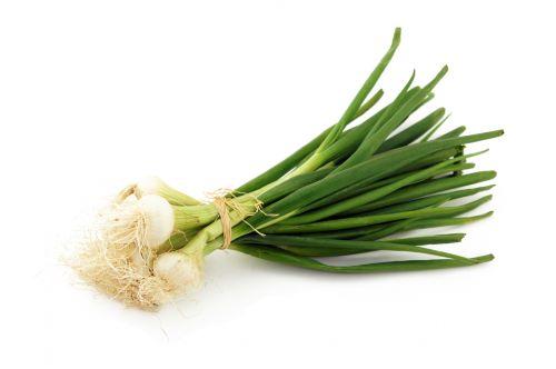 Botte Oignon Blanc