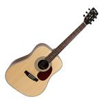 Guitare Folk Cort Earth 70