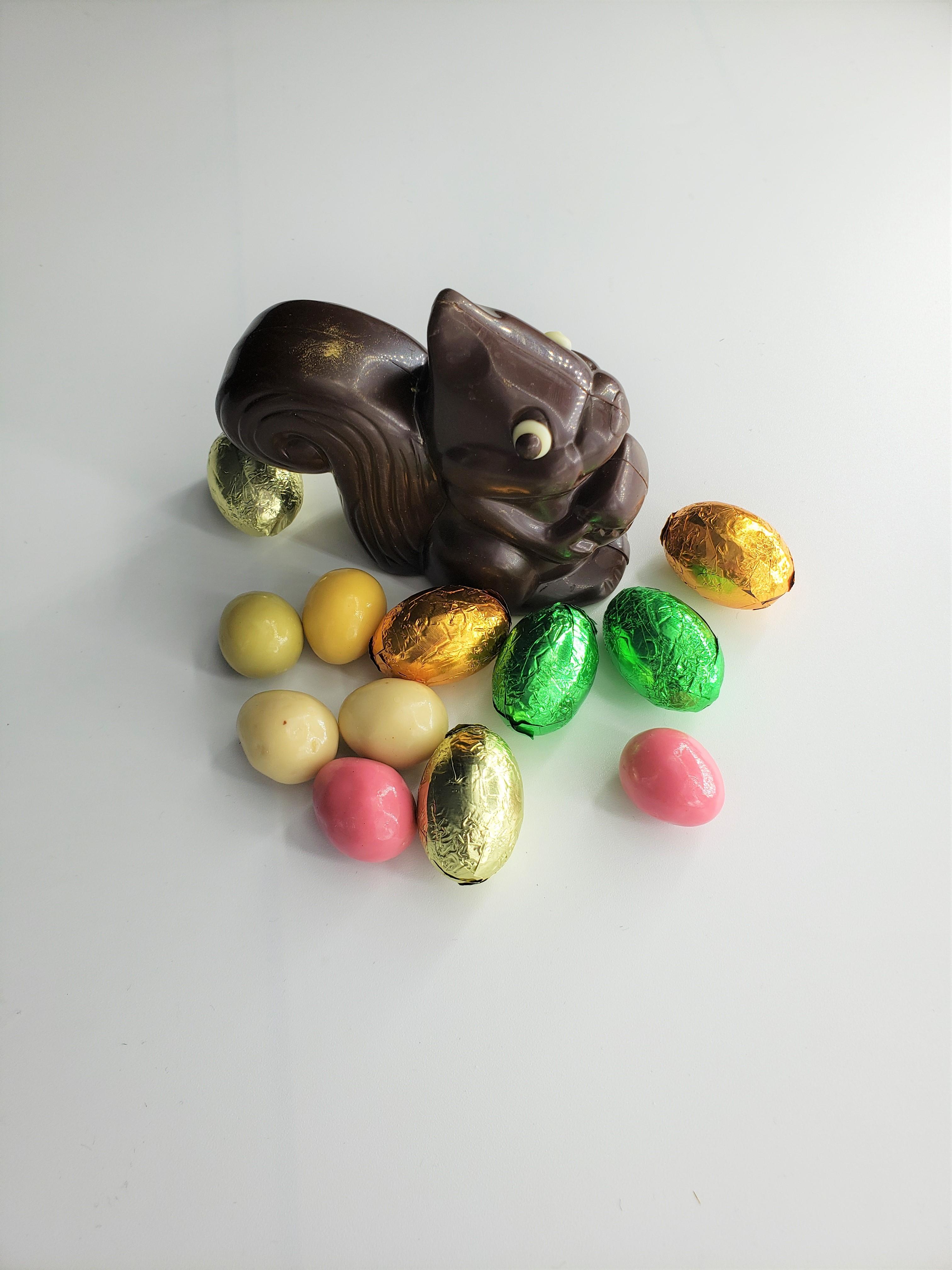 NUTS L'ECUREUIL CHOCOLAT NOIR