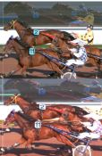 Photo-finish - Hippisme /  Industrie