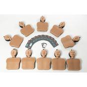 Pack 10 mannequins AmbuMan School