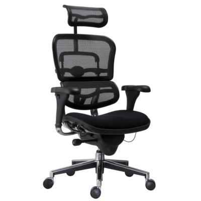 HUMAN - Fauteuil de bureau ergonomique avec support lombaire