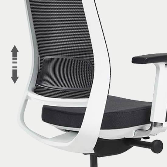 Zoom sur le support lombaire réglable du siège de bureau design moderne Appy