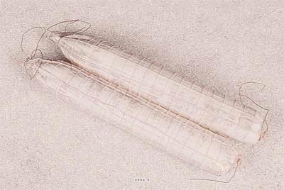 Saucisson Rosette artificiel blanc X 2 Plastique soufflé L 450x65 mm