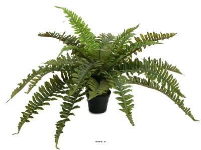 Fougère arborescente artificielle en pot, D 60 cm, H 35 cm