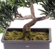 Bonsaï artificiel, Pin Podocarpus, H 23 cm