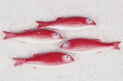 Rouget artificiel Poisson en lot de 4 en Plastique soufflé L 215x55 mm