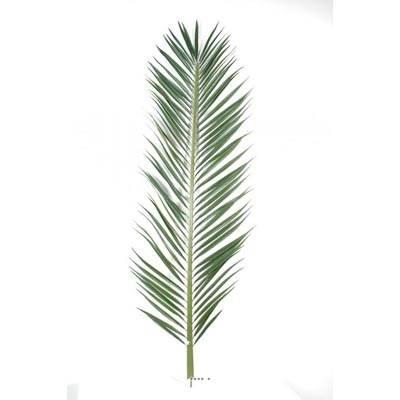 Feuille de palmier Phoenix artificielle en tergal H 185 cm Vert